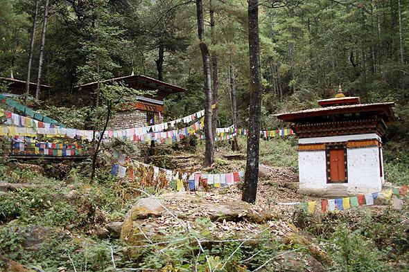 Природа Бутана, на пути к гнезду тигрицы