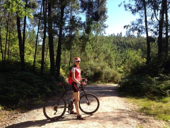 Camino Portugues - Поргальский путь Святого Иакова