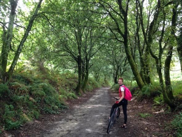 Галиция, Camino Portugues