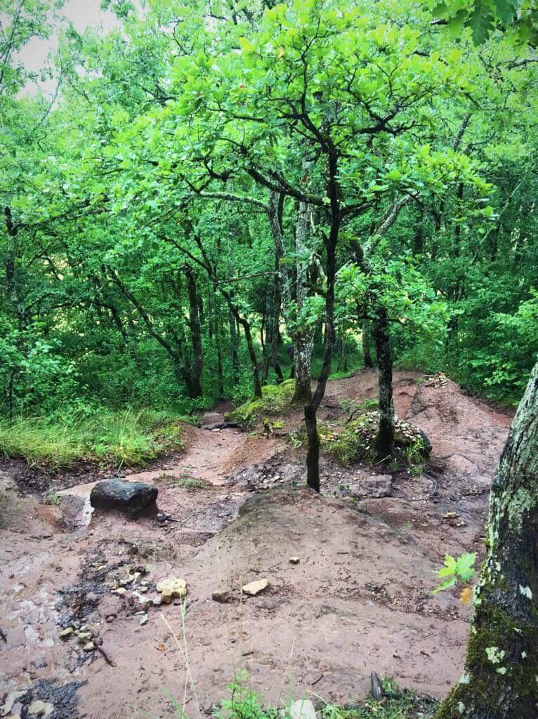 Дорога раскисла. Забраться в гору по глиняной тропе было нелегко