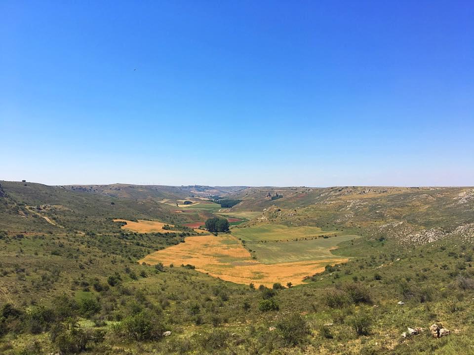 Долина Medinaceli