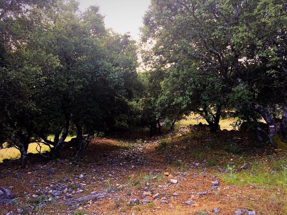 Путь к Pinilla de Jadraque