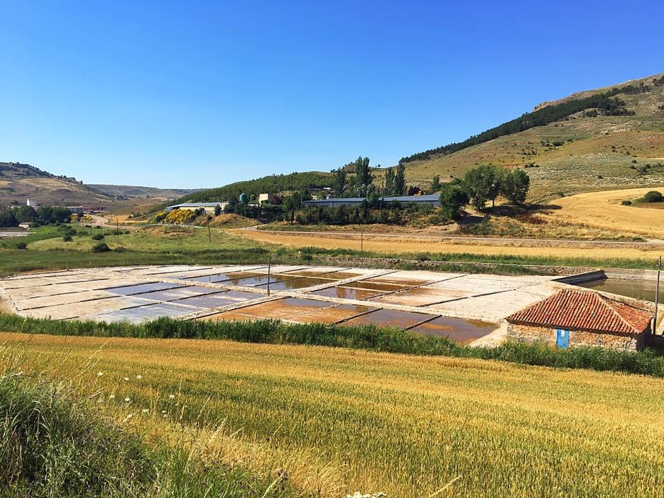 Соляные бассейны в Salinas de Medinaceli