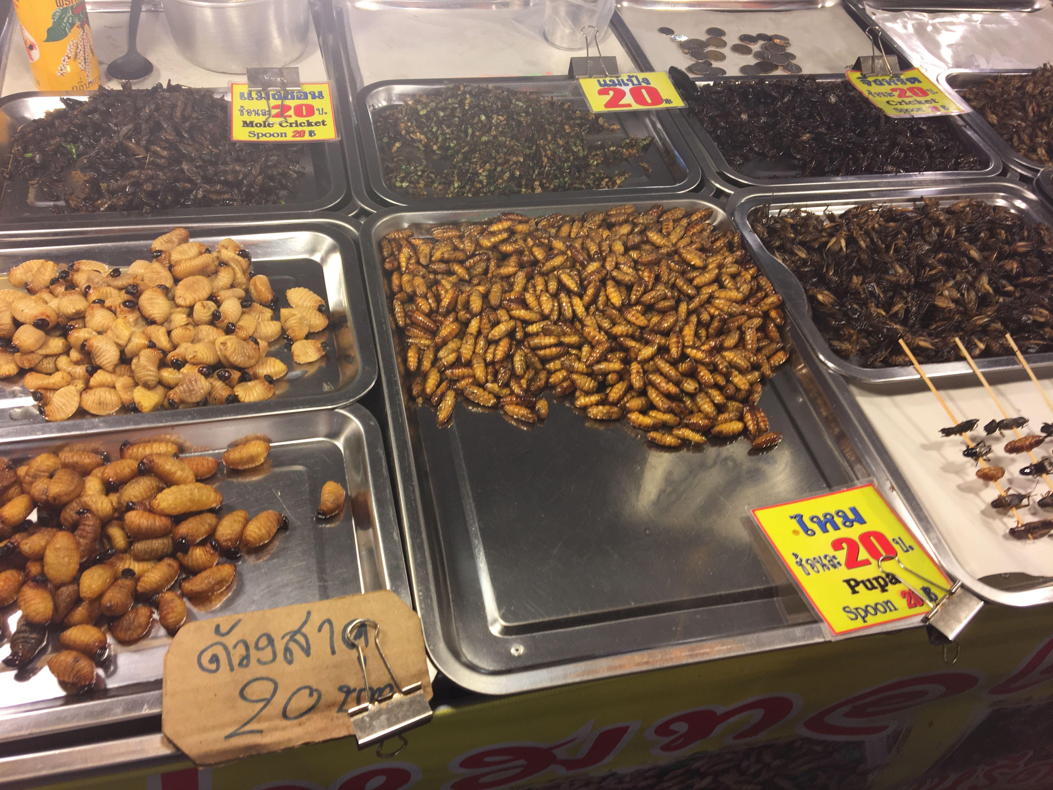 Насекомые на любой вкус. Ночной рынок в Тайланде