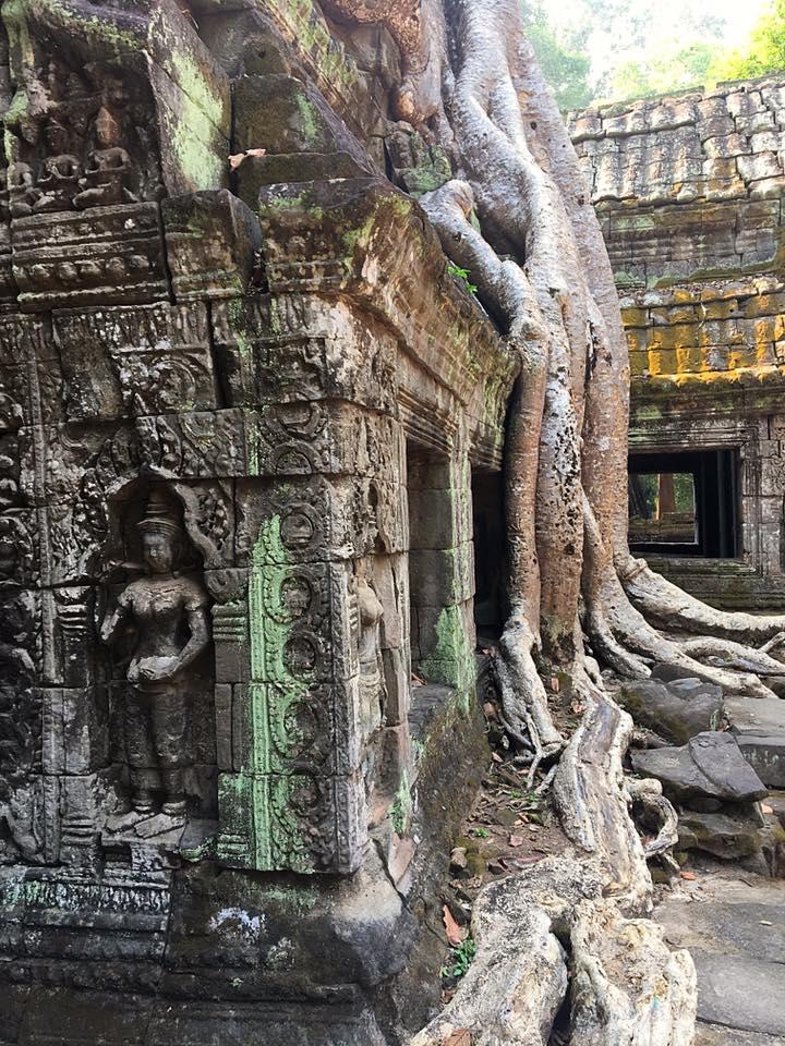 Храм Ta Prohm отвоеван у джунглей