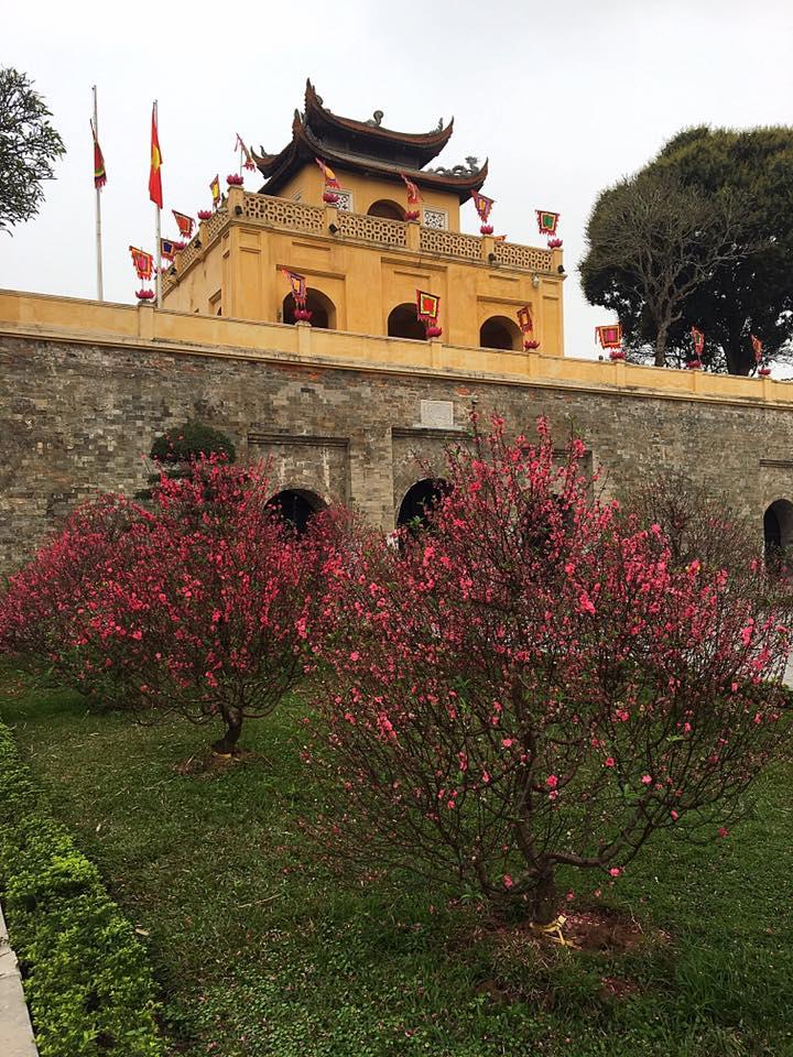 Ханойская цитадель и Королевский комплекс династии Ли, Ханой