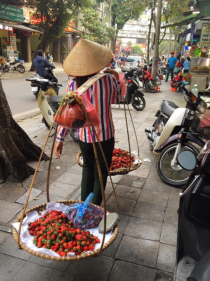 Уличный торговец, Ханой