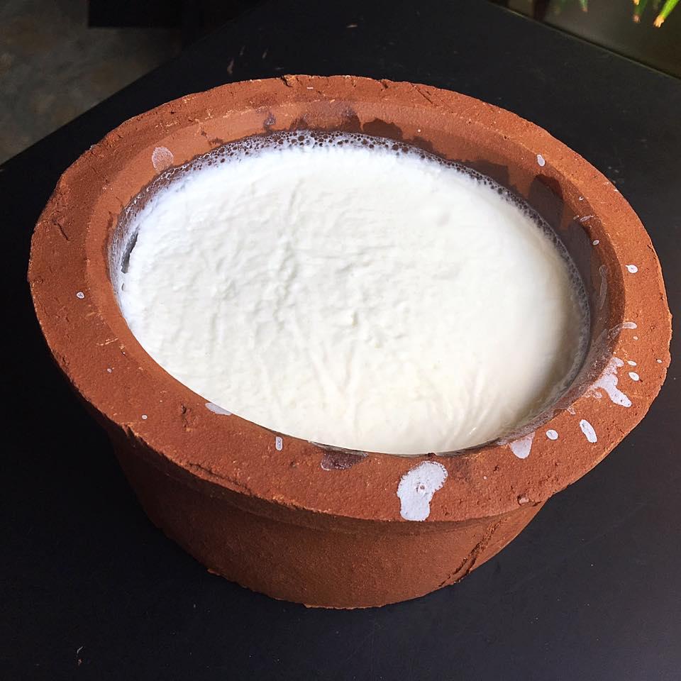Курд из буйволинного молока