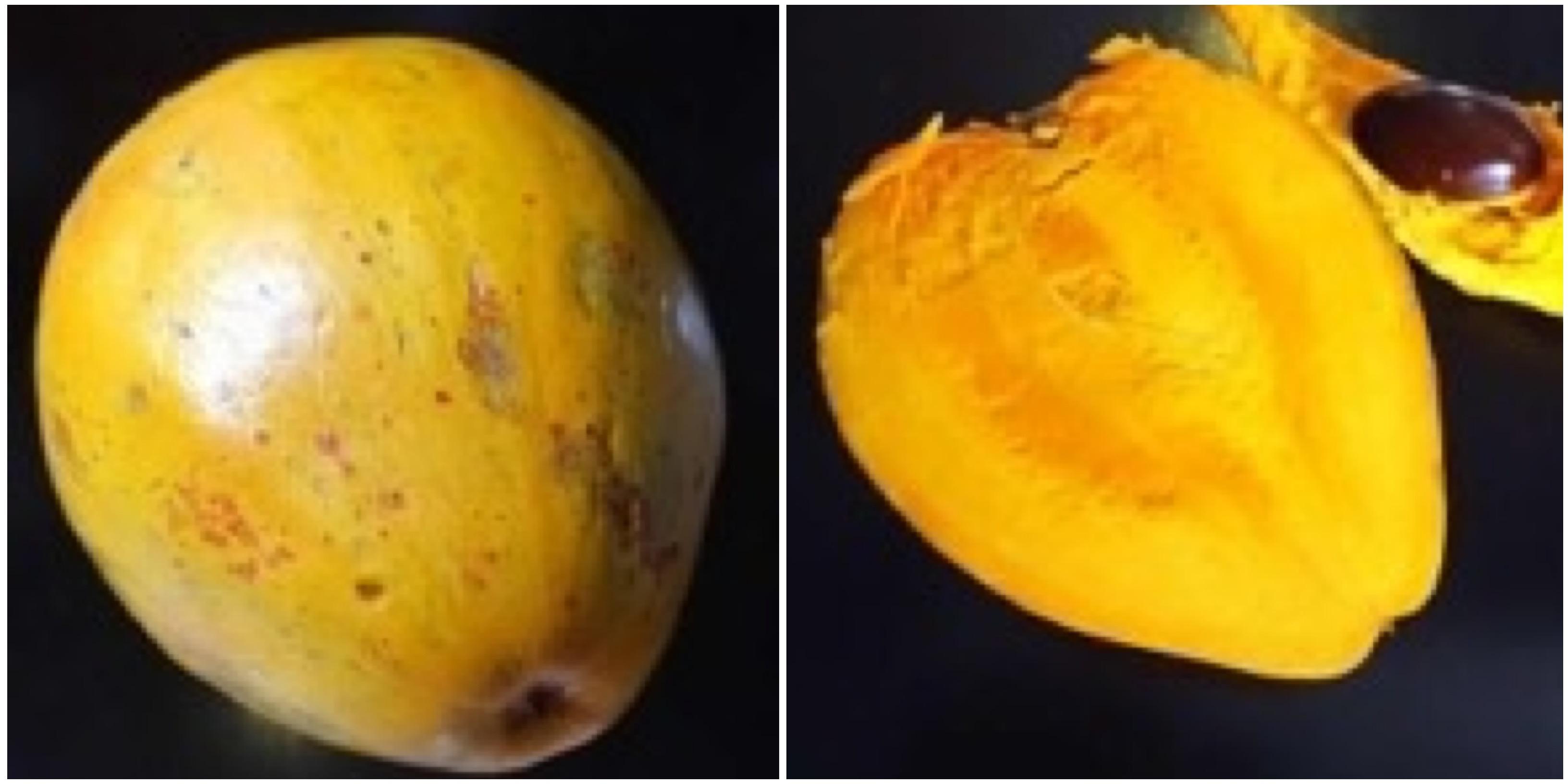 Канистель или яичный фрукт