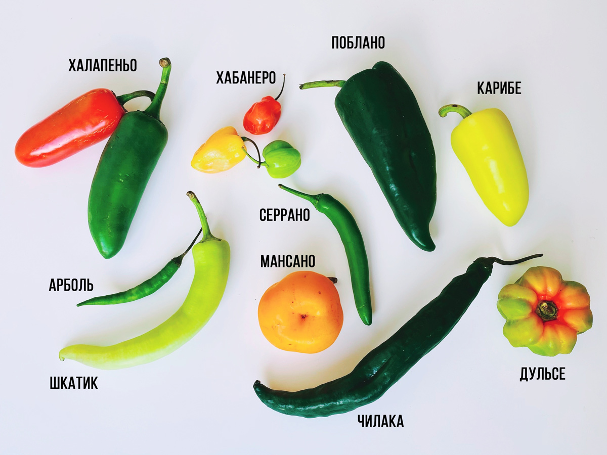 Перцы, которые можно купить в любом супермаркете Мексики