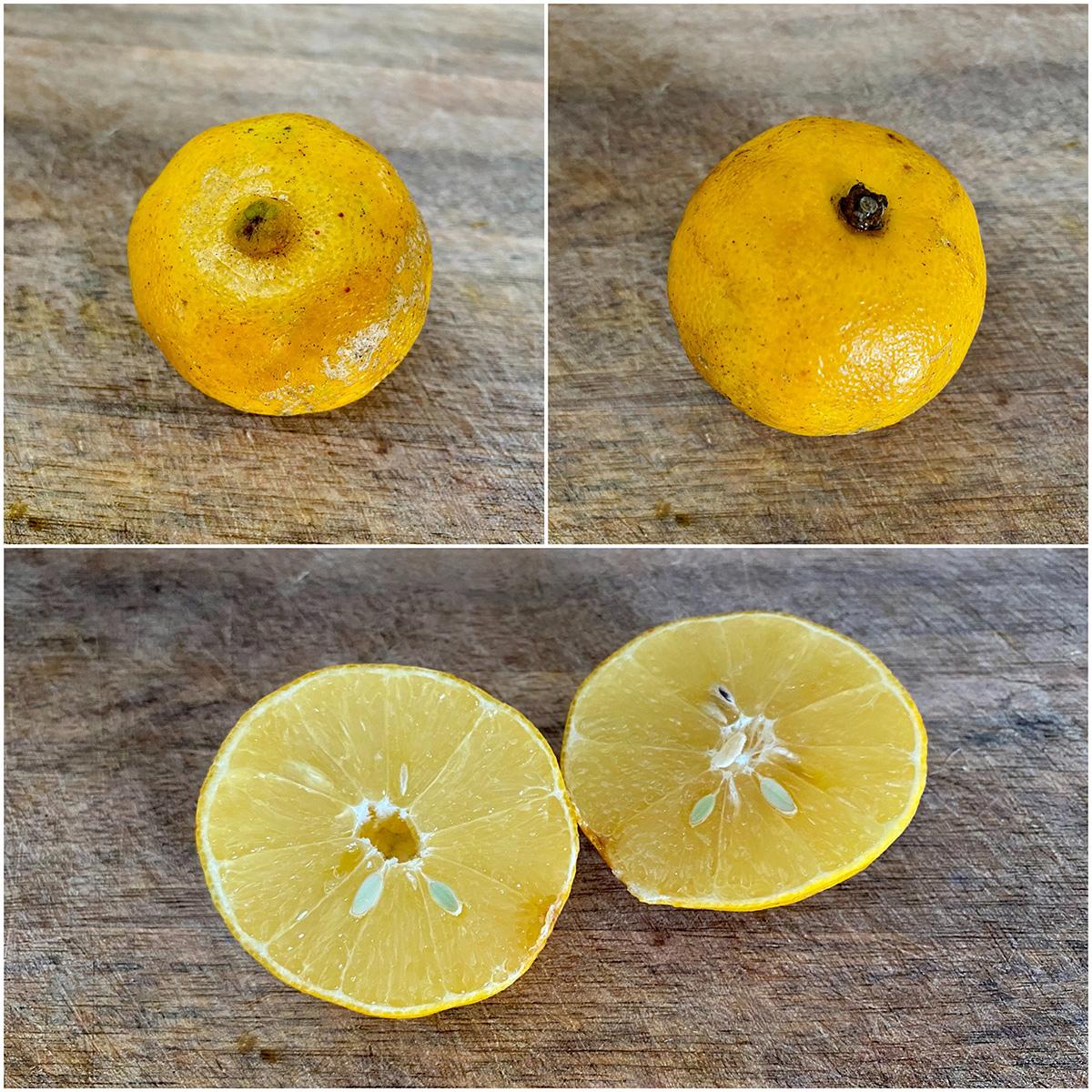Плод лиметты